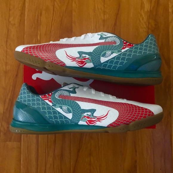 PUMA DRAGON EvoSPEED 4.3 indoor soccer shoe 50e86e3655b6
